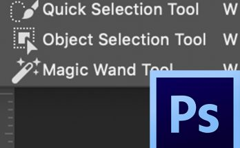 View of the Object Selection Tool in the toolbar